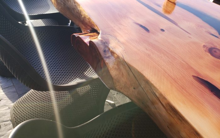 buitentafel-eettafel-iqonya-boomstamtafel-epoxytafel-epoxy-natuurproduct-jeneverbes